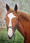 Acryl/Leinwand 50 x 70 cm