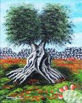 Scorci di Puglia 1 - Oliosu tela - 24 x 30 cm - 2013  (opera disponibile)