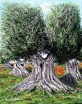 Ulivi di Terra pugliese - Olio su tela - 40 x 50 cm - 2008 - ( Donazione Museo Civico d'Arte Moderna Sciortino, Città di Monreale - Palermo )