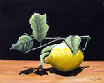 Osservazioni su un limone - Olio su tela - 40 x 50 cm - 2011 ( opera disponibile )