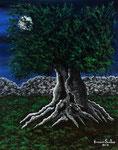 Ulivo secolare al chiaro di luna - Olio su tela - 40 x 50 cm - 2014