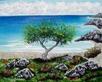 Costa mediterranea - Olio su tela - 24 x 30 cm - 2008 - ( Collezione privata )