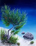 Angolo nel blu - Olio su tela - 40 x 50 cm - 2007  (opera disponibile)