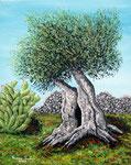 Ulivo secolare - Olio su tela - 40 x 50 cm - 2008 - ( collezione privata )