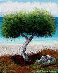 Il pino vicino al mare - Olio su tela - 24 x 30 cm - 2008 - ( Collezione privata )