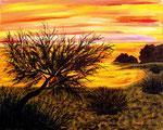 Tramonto sul litorale ionico - Olio su tela - 40 x 50 cm - 2007 ( collezione privata )