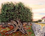 Angolo di Puglia - Olio su tela - 40 x 50 cm - 2011
