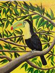 Il tucano - Olio su tela - 40 x 50 cm - 2004 - ( collezione privata )