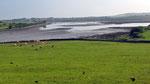 Mittwoch: Fahrt durch die Burren Region, die als Nationalpark  klassifiziert ist.