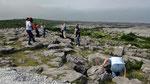 Mittwoch: Burren ist ein Kalkplateau.