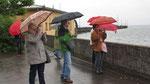 Donnerstag: Fotos auch bei Regen (festgehalten bei Langenargen am Bodensee).