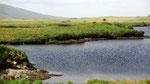 Dienstag: Die romantische Region Connemara ist ein Land der Berge, Seen und Moore.