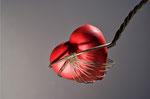 Ich möchte Bündigeres, Einfacheres, Ernsteres, ich möchte mehr Seele und mehr Liebe und mehr Herz. - V. van Gogh -