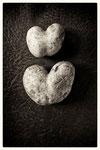 Lass die Liebe in Deinem Herzen wurzeln, und es kann nur Gutes daraus hervorgehen. - A. von Hippo -