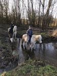 Andreas und Fortuna reiten sogar durch reißende Flüsse ...