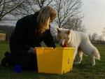 Ondra: Trickdog aufräumen