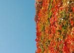 Oktoberhimmel in Sachsen_II