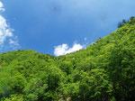 パキーンと晴れた青空をわたる風はまだどこか雪の冷たさを含んでいる。長い冬を暮らしたからこそ、新緑の季節の喜びはひとしおなのです。