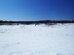 ピーカンのデッカイ空。茫々とした雪原。その向こうに流れがある。十勝には夢があります。