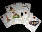 jeu de carte - famille mammifère