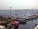 Soviele Autos warten auf den Abtransport