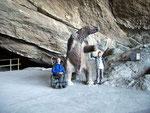 In einer grossen Höhle fand man Überreste von den vor 10'000 Jahren ausgestorbenen Riesenfaultieren