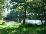 L'étang avant 2021