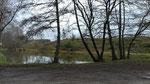 L'étang n'a plus sa parure de sapin (2021)