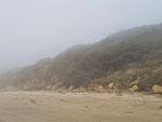 La brume arrive ...
