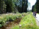 Radtour im Nationalpark Bayerischer Wald (am Reschbach)