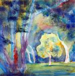Baum im Licht, Aquarell 50x50 cm, 170 Euro ohne Rahmen