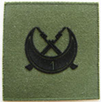 Нашивка. 1-я рота  африканского полка. ЦЕНА 100 руб.