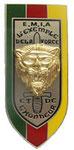 Курсовой знак школы младших офицеров для африканских курсантов. ЦЕНА 800 руб.