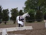 CHU Münster 2009: das Dressurfinalpferd