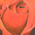 Red Rose - Öl auf Leinwand  im Schattenfugenrahmen  - 90,- Euro