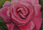 Morning Rose - 50 x 70 - Acryl auf Leinwand  im Schattenfugenrahmen - 180,- Euro