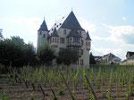 Schloss Schönborn ist ca. 70 m entfernt/Schoss Schönborn 70 m