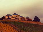 Schloss Johannisberg ist ca. 3 km entfernt/Schloss Johannisberg in 3 km