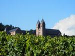 Benediktinerabtei St. Hildegard ist ca. 5 km entfernt/St. Hildegard distance 5 km