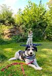 Lucy und Maya