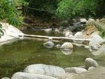 """Eine """"Brücke"""" über den Rio Minca"""