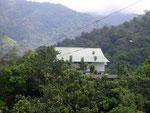 Wohnhaus mit viel Natur