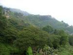 Das Naturreservat La Cumbre in 2600 Meter Höhe in der Sierra Nevada de Santa Marta
