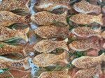 Lachsfischchen