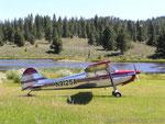 Cessna 170A - D-EATA