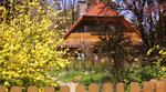 Unser Haus im April