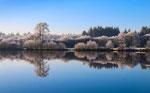 Wintermorgen am Woldsee. Heiko Sander