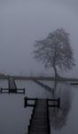 Nebel. Peter Moe