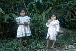 Kinder brocken Beeren