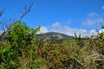 Der Rincon de la Vieja ist 1809 m hoch und war erst vor einigen Jahren aktiv, deswegen durften wir den Gipfel auch nicht besteigen.